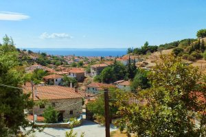 Вид на поселок Никити