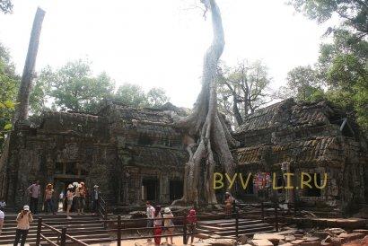 Храм Та Пром в Ангкоре