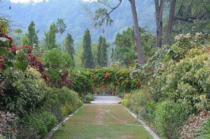Ботанические сады на Пенанге